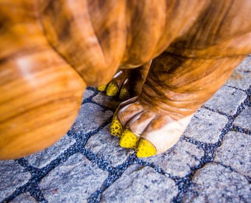 Close up hippo medium voet - houtwerk - Exotisch design Angels Objects