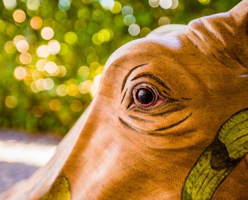 Close up handbeschilderd oog Hippo Small - teak designstoel met handbeschilderde lederen zitting - exotic design